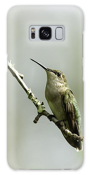 Female Ruby-throated Hummingbird 1 Galaxy Case