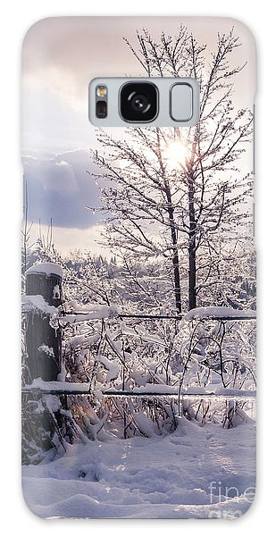 Fence Post Galaxy Case - Fence And Tree Frozen In Ice by Elena Elisseeva