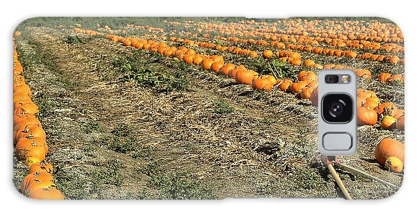 Fencing The Pumpkin Patch Galaxy Case