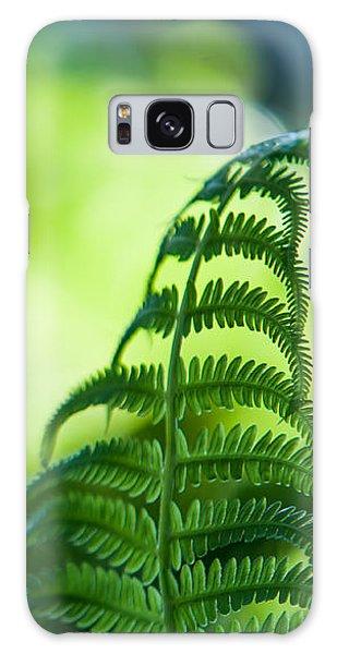 Fern Leaves. Healing Art Galaxy Case