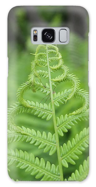 Fern Galaxy Case by Tiffany Erdman