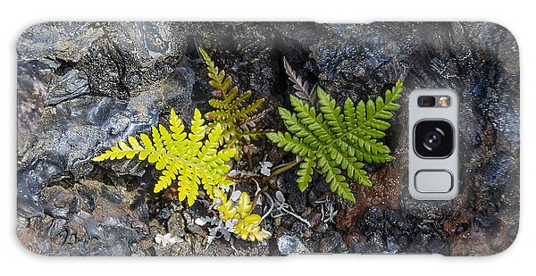Ferns In Volcanic Rock Galaxy Case