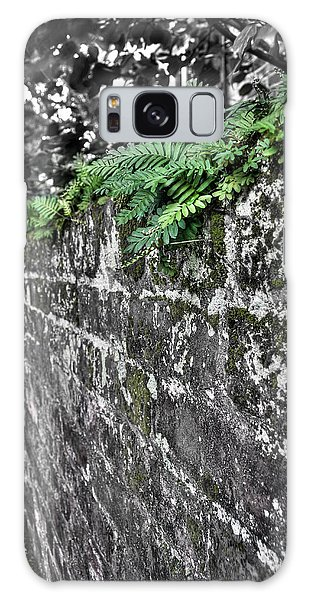 Ferns On Old Brick Wall Galaxy Case