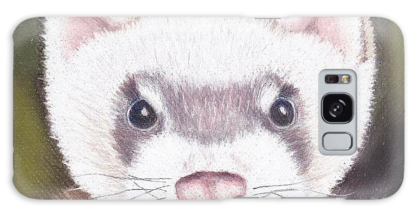 Ferret Galaxy Case