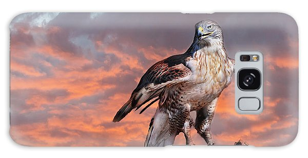 Ferruginous Hawk Galaxy Case