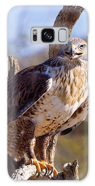 Ferruginous Hawk Galaxy Case