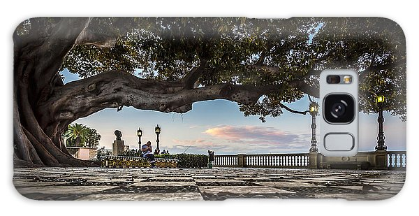 Ficus Magnonioide In The Alameda De Apodaca Cadiz Spain Galaxy Case by Pablo Avanzini