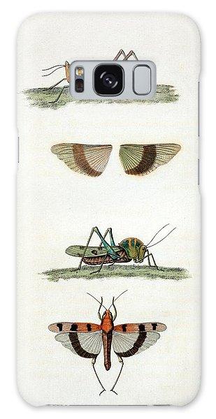 Field Crickets Galaxy Case