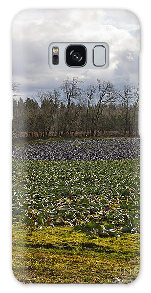 Field Of Color 2 Galaxy Case by Belinda Greb