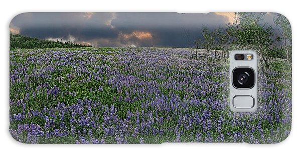 Field Of Lupine Galaxy Case by Ed Hall