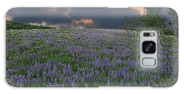Field Of Lupine Galaxy Case