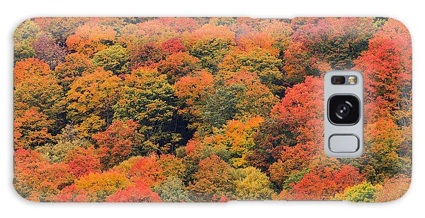 Field Of Trees From Above During Fall Foliage. Galaxy Case