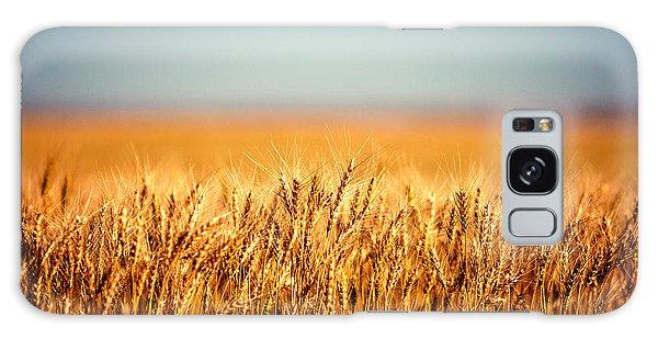 Field Of Wheat Galaxy Case