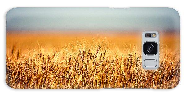 Rural Scenes Galaxy Case - Field Of Wheat by Todd Klassy