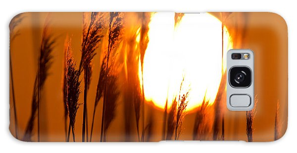 Fiery Grasses Galaxy Case