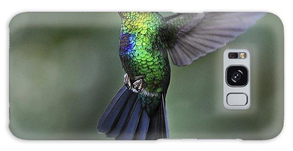 Fiery-throated Hummingbird..  Galaxy Case
