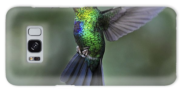 Fiery-throated Hummingbird..  Galaxy Case