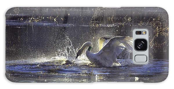 Fighting Swans Boxley Mill Pond Galaxy Case by Michael Dougherty