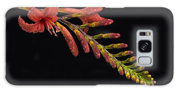 Fire And Water Galaxy Case by Trevor Chriss