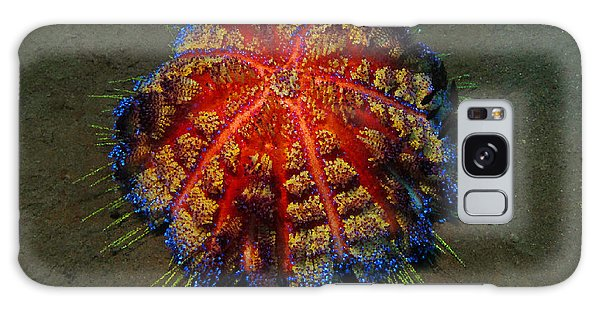 Fire Sea Urchin Galaxy Case by Sergey Lukashin