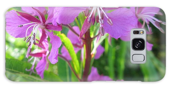 Fireweed 3 Galaxy Case
