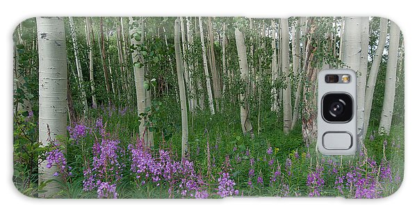 Fireweed And Aspen Galaxy Case