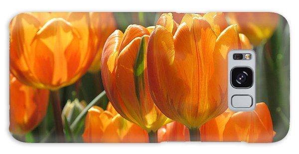 First Tulip Of Spring Galaxy Case