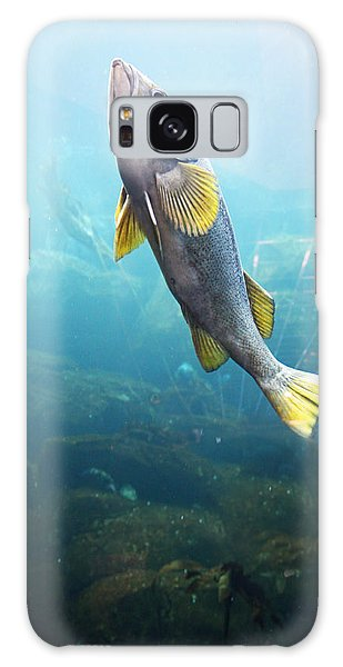 Fish Galaxy Case