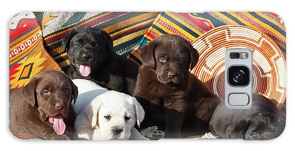 Chocolate Lab Galaxy Case - Five Labrador Retriever Puppies Of All by Zandria Muench Beraldo