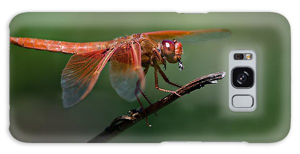 Flame Skimmer Dragonfly Galaxy Case by Linda Villers
