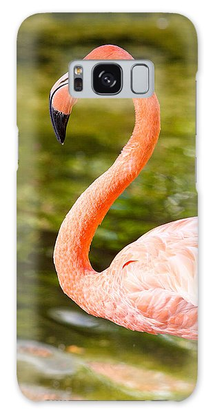 Flaming Flamingo Galaxy Case