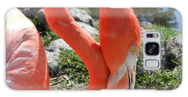 Flamingo By The Pond Galaxy Case