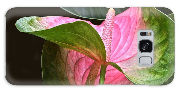 Flamingo Flower Galaxy Case