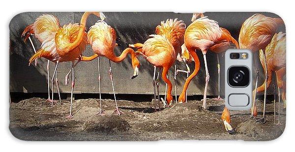 Flamingo Hangout Galaxy Case
