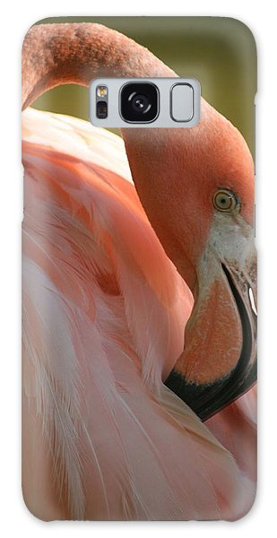 Flamingo Galaxy Case by Scott Cunningham