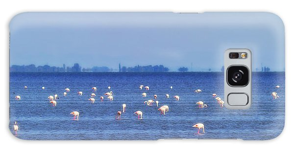 Flamingos In The Pond Galaxy Case