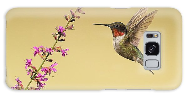Flight Of A Hummingbird Galaxy Case by Daniel Behm