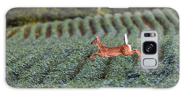 Deer Galaxy S8 Case - Flight Of The White-tailed Deer by Everet Regal