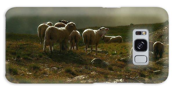 Flock Of Sheep Galaxy Case