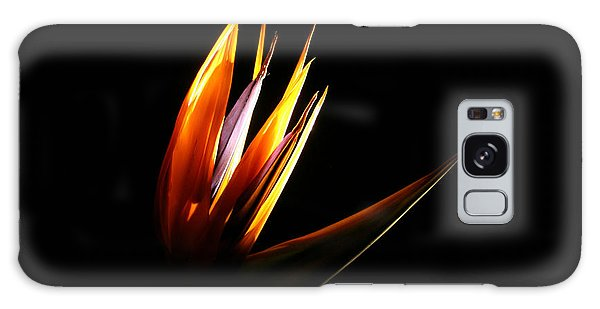 Galaxy Case featuring the photograph Flor Encendida Detalle by Francisco Pulido