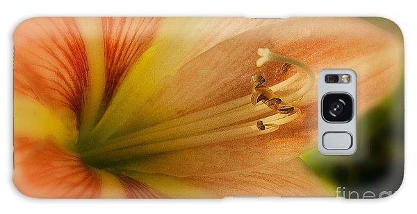 Floral 3 Galaxy Case