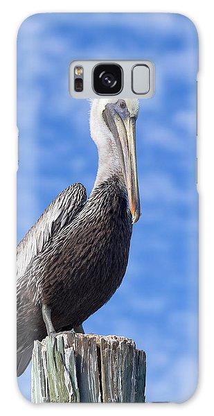 Florida Brown Pelican Galaxy Case