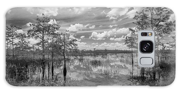 Florida Everglades 5210bw Galaxy Case
