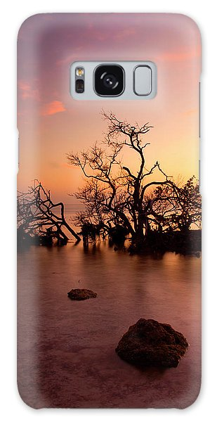 Mangrove Galaxy Case - Florida Keys Sunset by Mike  Dawson