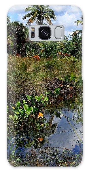 Florida Lagoon Galaxy Case