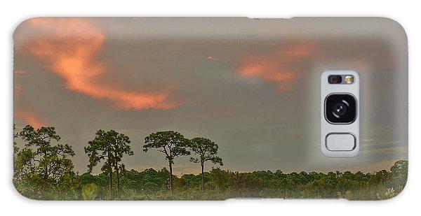 Florida Landscape Galaxy Case