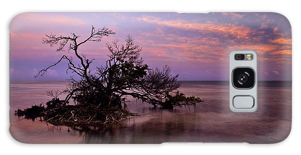 Mangrove Galaxy Case - Florida Mangrove Sunset by Mike  Dawson