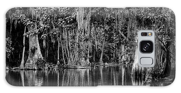 Florida Naturally 2 - Bw Galaxy Case