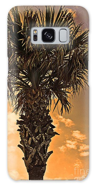 Florida Palm Galaxy Case
