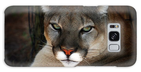 Florida Panther Galaxy Case